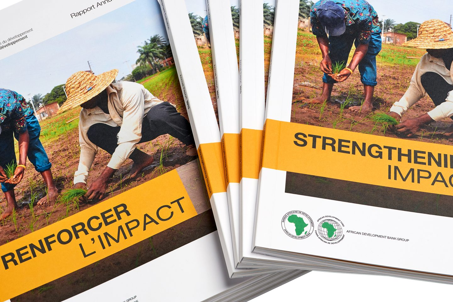 African Development Bank Annual Report